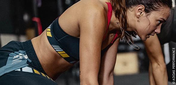Fitness / Training
